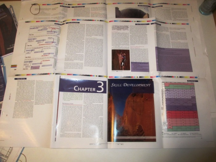 The two large sheets showing the finished look of 16 representative pages.