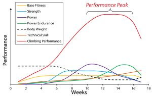 Through careful planning, periodization creates a synergistic fitness effect that raises your overall performance to an all-time high.