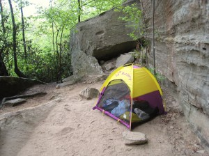 A cheap play tent like this can be very useful, especially when they become ambulatory.
