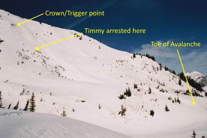 Avalanche Diagram