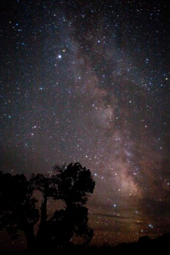 The night sky at Robber's Roost.