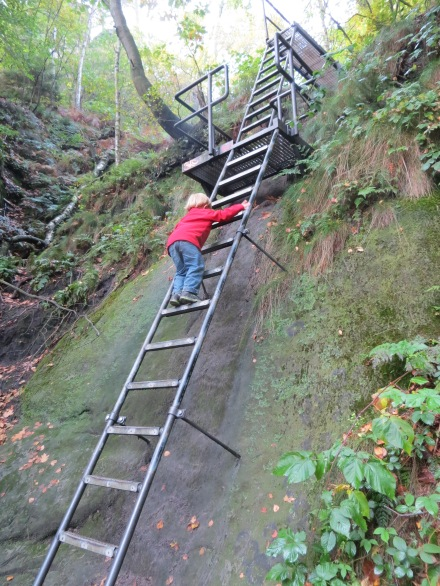 Logan negotiating one of many ladders on the hike to Schrammsteinaussicht.