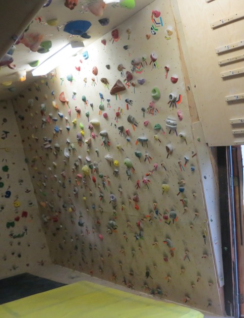 A slightly overhanging wall like this one can be used for both ARCing and Limit Bouldering.  Include an assortment of large holds for ARCing, and small, realistic holds for Limit Bouldering.  However, the disadvantage of less steep walls is that they will provide less climbing travel (in the direction of the wall) for a given ceiling height.